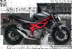 Das Naked Bike Suzuki Gladius