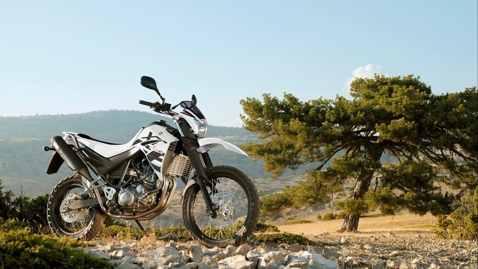 Die XT 660R ist am liebsten in leichtem Gelände unterwegs