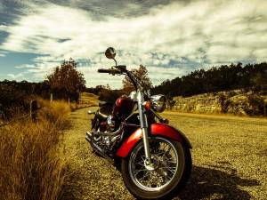 eine bikerin daten beitrag2