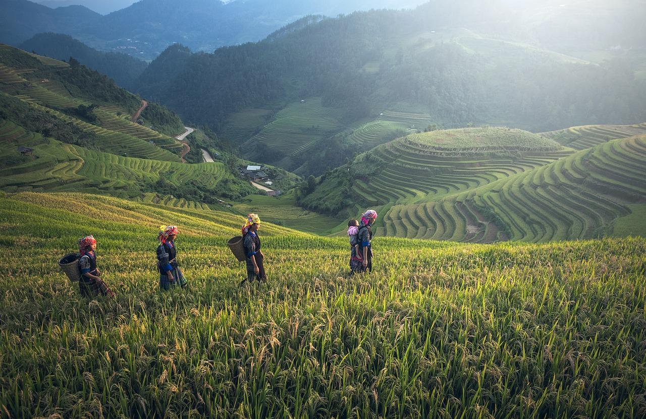 asien-in-laos-erleben